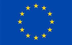PMI want EU: opportunità di crescita per le imprese e i territori. Un piano degli Investimenti per l'Europa